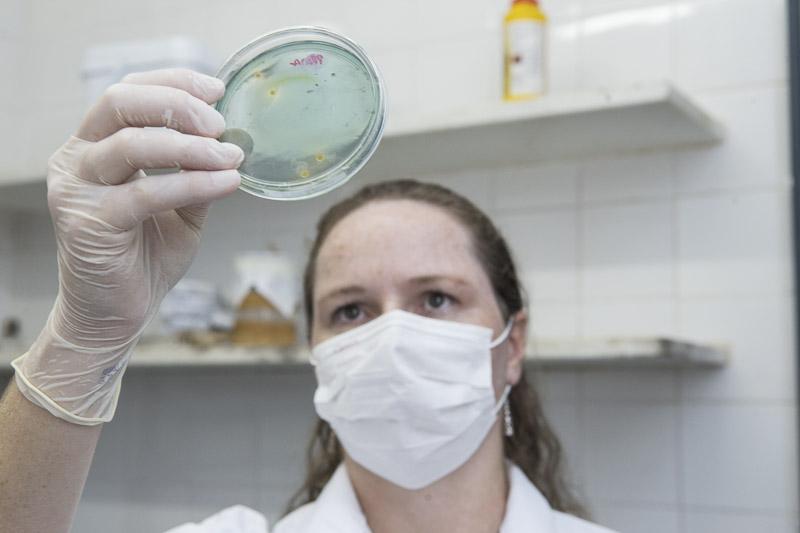 Aquatec - Pós Larvas de Camarão Marinho